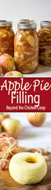 quick thanksgiving desserts 497 best images about everything holiday related on pinterest
