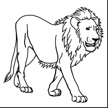 terrific preschool jungle animals coloring pages with jungle