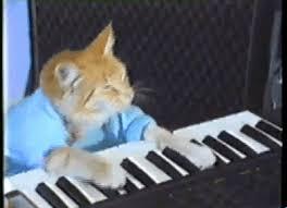 Keyboard Cat Meme - keyboard cat gif find share on giphy