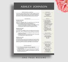 professional resume template for word and pages 1 and 2 page