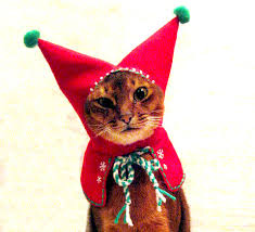 cat christmas christmas cat costumes now featured in gift guide mousebreath