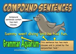 sammy does compound sentences