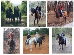 Horseback riding trail rides horse rentals horse riding