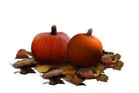 halloween pumpkin patch background pumpkin patch stock png by karahrobinson art on deviantart