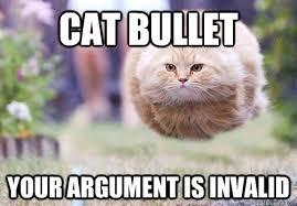Meme Your Argument Is Invalid - cat bullet your argument is invalid cat bullet quickmeme