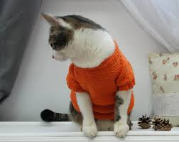 sweaters for cats sweater for cat etsy