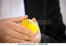 etrog for sale buyer chooses citrus etrog ancient stock photo 699607360