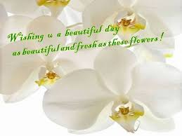 wish a wonderful day to a dear one free a great day ecards