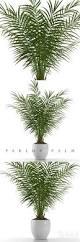 487 best plant flower images on pinterest flowers gardening
