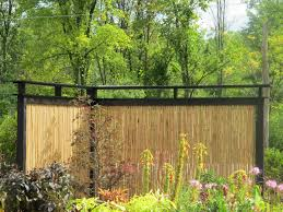 exterior design interesting bamboo fencing with balsam hill trees