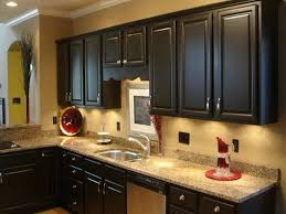 Color For Kitchen Walls Ideas 41 Best Kitchens W Dark Cabinets Images On Pinterest Dream