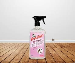 how to eliminate ants from your kitchen aunt fannie u0027s cleaning