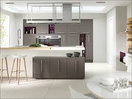 interior swinging kitchen doors choice image glass door