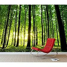 1wall stunning green forest green trees and sunrise wallpaper wall