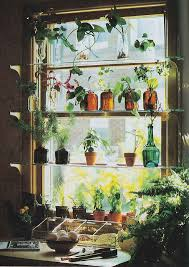 small indoor garden ideas garden ideas cedar window boxes indoor window box garden window