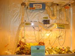 the rules of growing atlantis hydroponics blog
