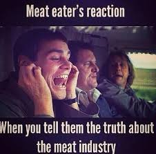 Memes About Internet - 22 of the best vegan memes on the internet corinne nijjer