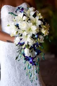 Wedding Flowers Blue And White Best 25 Delphinium Bridal Bouquet Ideas On Pinterest Delphinium