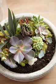 54 best plants and gardening tools images on pinterest world