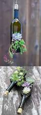 Succulent Planters For Sale by Succulent Wine Bottle Planters Pictures Photos And Images For