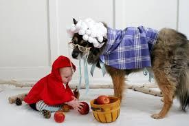 7 adorable diy dog costumes for halloween
