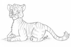 tiger sketch by oemilythepenguino on deviantart