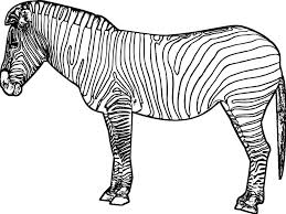 free coloring pages of a zebra fish zebra coloring for kids zebra