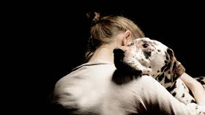state with most dog owners 2016 pets help people manage serious mental illnesses shots health