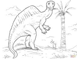 ouranosaurus dinosaur coloring page free printable coloring pages