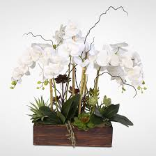 silk orchids real touch phalaenopsis silk orchids with succulents in a
