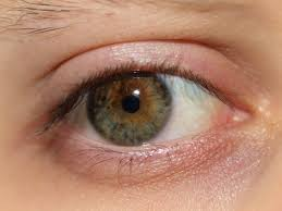 colors close to yellow eye color u2013 pentucket profile