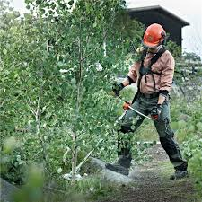 husqvarna brush cutter gives you the best results for overgrowth