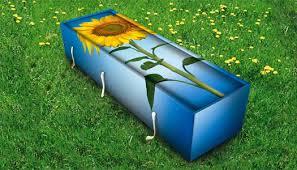 cardboard coffin biodegradable coffins an eco ending beagley brown design