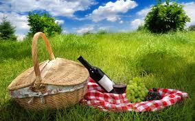 Wine Picnic Baskets Picnic Nature Wine Grapes Basket Wallpaper 2880x1800 182355