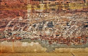 wall dog murals spydersden coke
