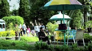 Teh Rolas Wonosari wisata agro kebun teh wonosari malang lawang jawa timur
