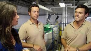 greenwave biodiesel youtube