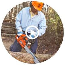 black friday chainsaw sales shop chainsaws u0026 pole saws at lowes com