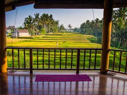 the ultimate guide to yoga in ubud 2017