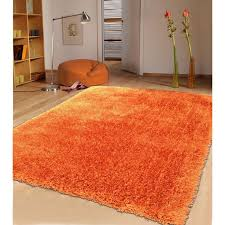 Orange Shag Rugs 43 Best Alfombras Images On Pinterest Contemporary Area Rugs
