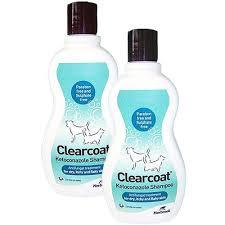 clearcoat dog u0026 cat shampoo buy online vet medic com