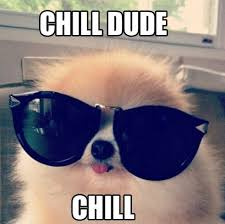 Chill Meme - chill meme funny pictures lol comics and jokes great animal