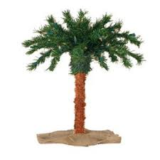 cheap lit palm tree outdoor find lit palm tree outdoor deals on