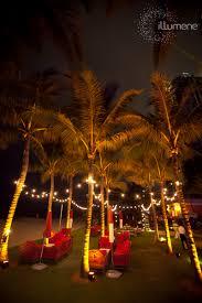 string lights café lights market lights bistro lights rental