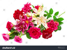 Roses And Lilies Beautiful Bouquet Roses Lilies Isolated On Stock Photo 698570443