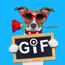 hi5gif animated cards quotes android apps on play