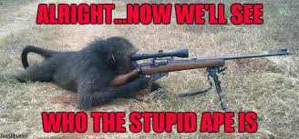 Baboon Meme - if this picture is real it s time to be very afraid imgflip