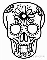 skull pics clipart free best skull pics