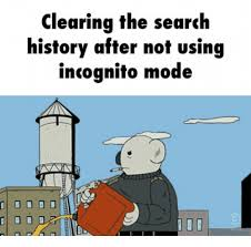 Search History Meme - clearing the search history after not using incognito mode d d d d