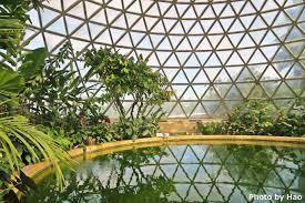 Brisbane Botanic Gardens Mount Coot Tha by International Students Student Life In Brisbane Page 2